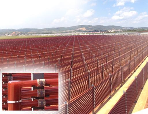 BGG's 80-Acre Astaxanthin Production Facilility